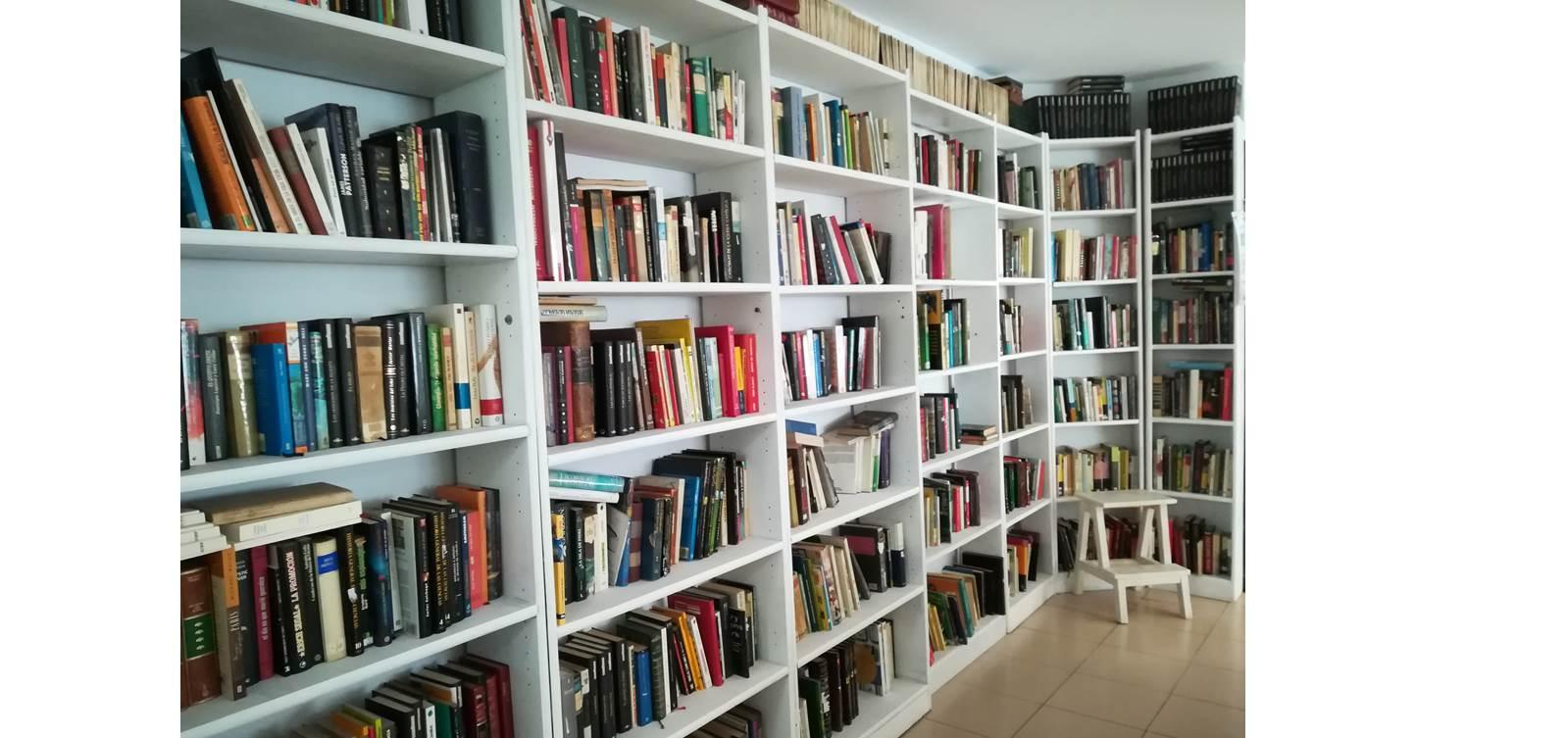 libros perdidos