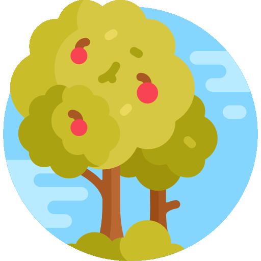 Mantenimiento de árboles frutales