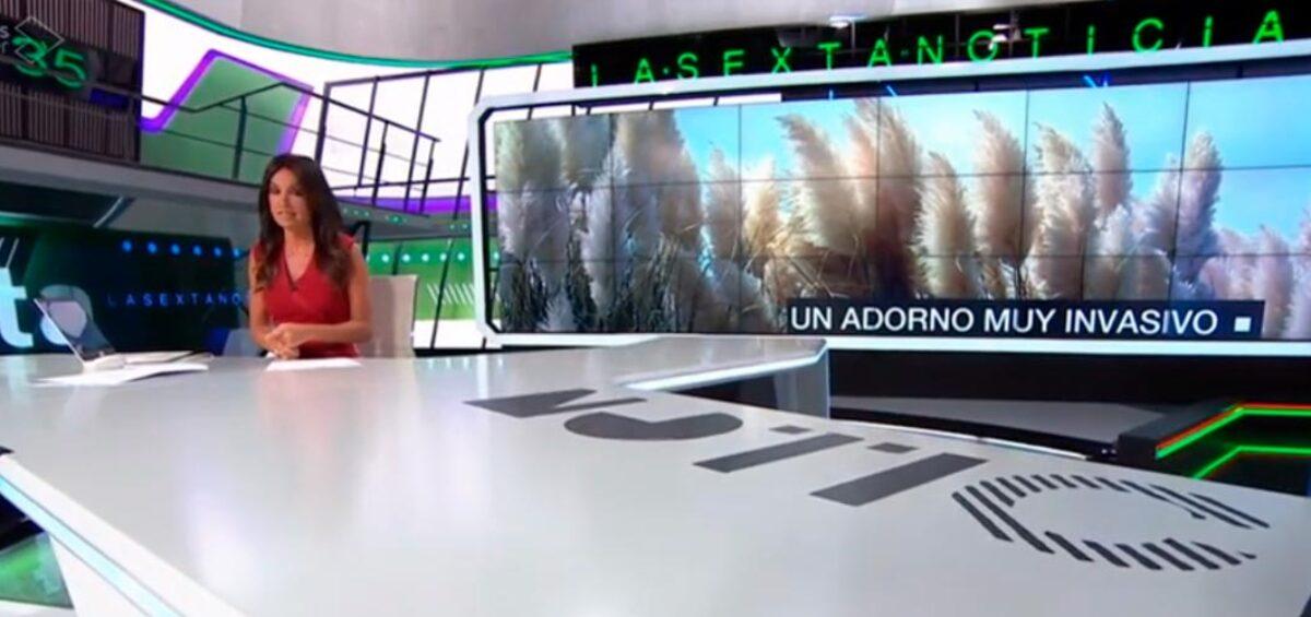 Reportaje del proyecto Life STOP Cortaderia en La Sexta