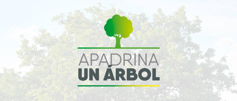 """Comienza la campaña """"Apadrina un árbol en el huerto más increíble del mundo"""""""