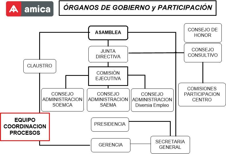 Organigrama organos gobierno amica