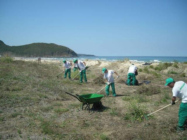 Mantenimiento zonas verdes jardinería Cantabria
